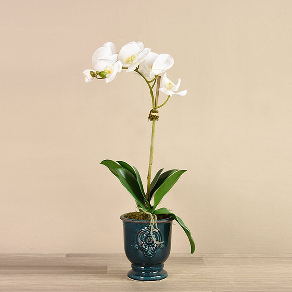 Artificial Artificial Orchid Arrangement, Faux Artificial Orchid Arrangement, Fake Artificial Orchid Arrangement  - Bloomr
