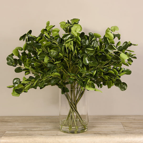 Bloomr-USA Flowers Money Plant Arrangement in Glass Vase artificial flowers artificial trees artificial plants faux florals