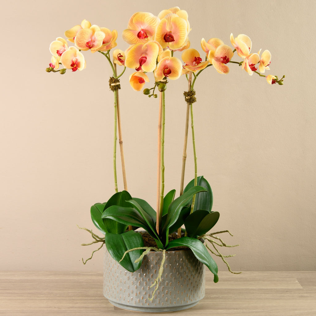 Bloomr-USA Flowers Orchid Arrangement in Ceramic Vase artificial flowers artificial trees artificial plants faux florals