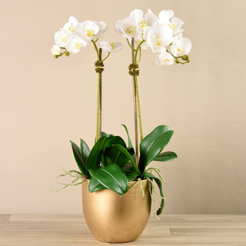 Bloomr-USA Flowers Orchid Arrangement in Gold Vase artificial flowers artificial trees artificial plants faux florals