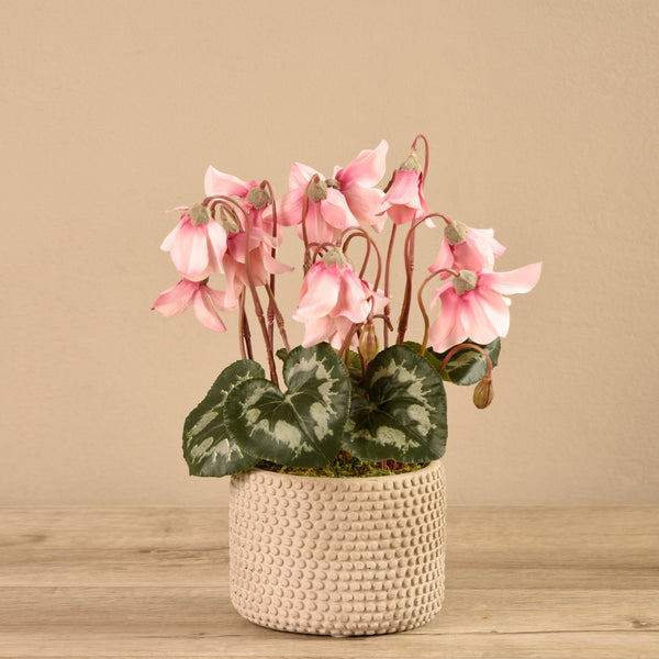 Bloomr-USA Flowers Potted Cyclamen artificial flowers artificial trees artificial plants faux florals