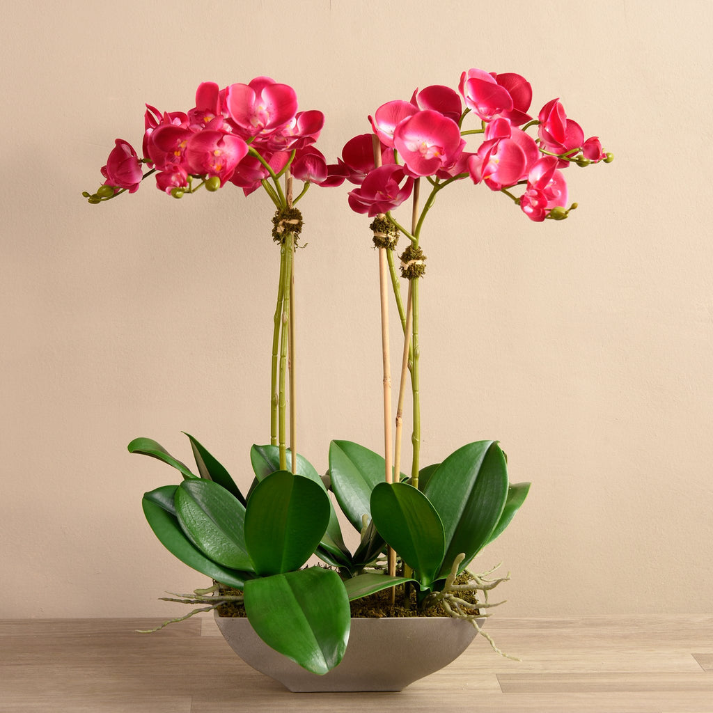 Bloomr-USA Flowers Small / Magenta Orchid Arrangement artificial flowers artificial trees artificial plants faux florals