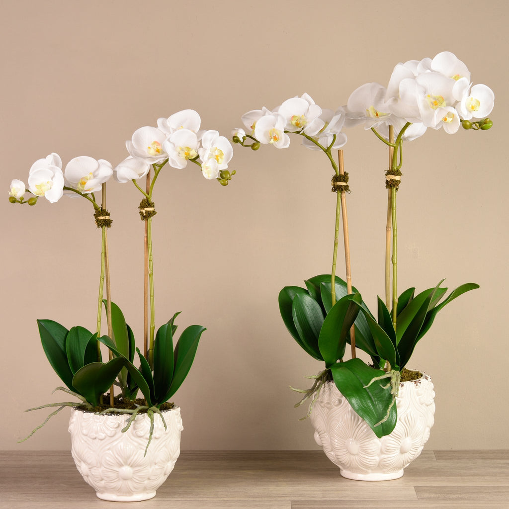 bloomr-usa Flowers Small / White Secret Garden Orchid artificial flowers artificial trees artificial plants faux florals