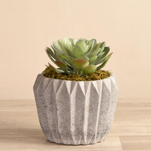 Artificial Geometric Potted Succulent, Faux Geometric Potted Succulent, Fake Geometric Potted Succulent  - Bloomr