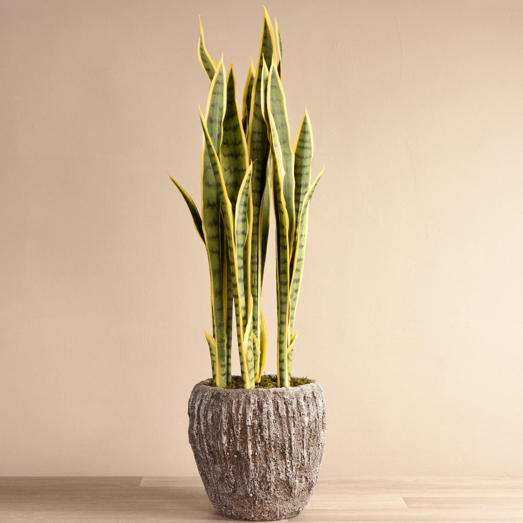 bloomr-usa Greenery Large Potted Sanseveria artificial flowers artificial trees artificial plants faux florals