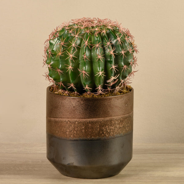 Bloomr-USA Greenery Potted Round Cactus artificial flowers artificial trees artificial plants faux florals