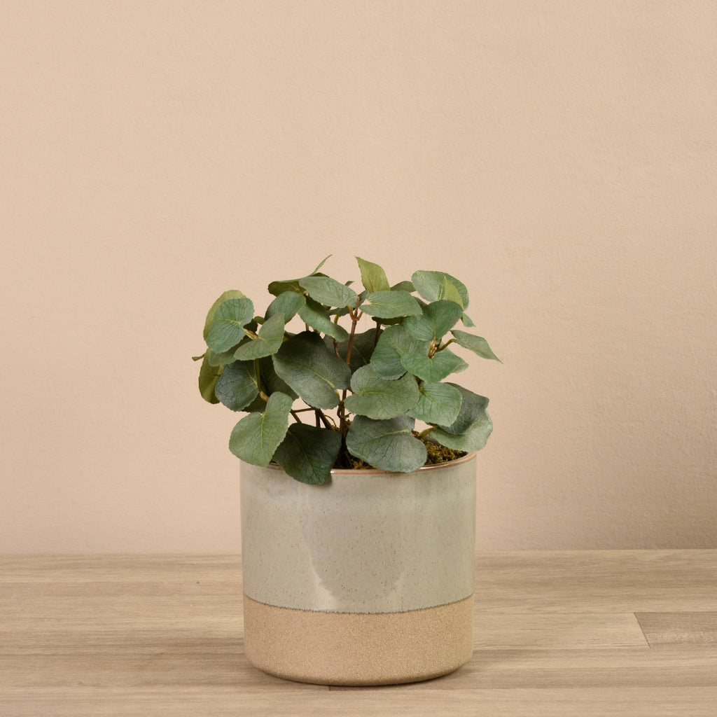 Bloomr-USA Greenery Small Eucalyptus Arrangement in Ceramic Vase artificial flowers artificial trees artificial plants faux florals