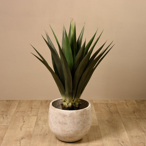 Artificial Agave, Faux Agave, Fake Agave  - Bloomr
