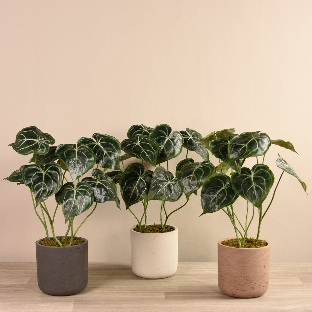 Artificial Big Anthurium Green Plant in Cement Pot, Faux Big Anthurium Green Plant in Cement Pot, Fake Big Anthurium Green Plant in Cement Pot  - Bloomr