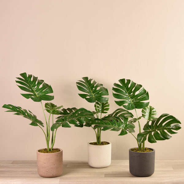 Bloomr-USA Plants Beige Potted Monstera Plant artificial flowers artificial trees artificial plants faux florals
