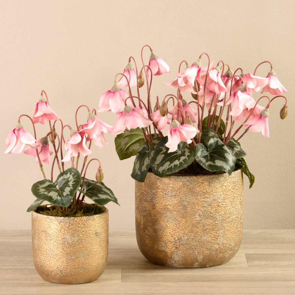 Artificial Cyclamen Arrangement, Faux Cyclamen Arrangement, Fake Cyclamen Arrangement  - Bloomr