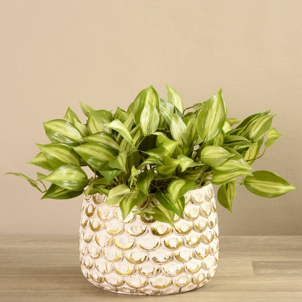 Bloomr-USA Plants Medium Potted Vanilla Leaf Plant artificial flowers artificial trees artificial plants faux florals