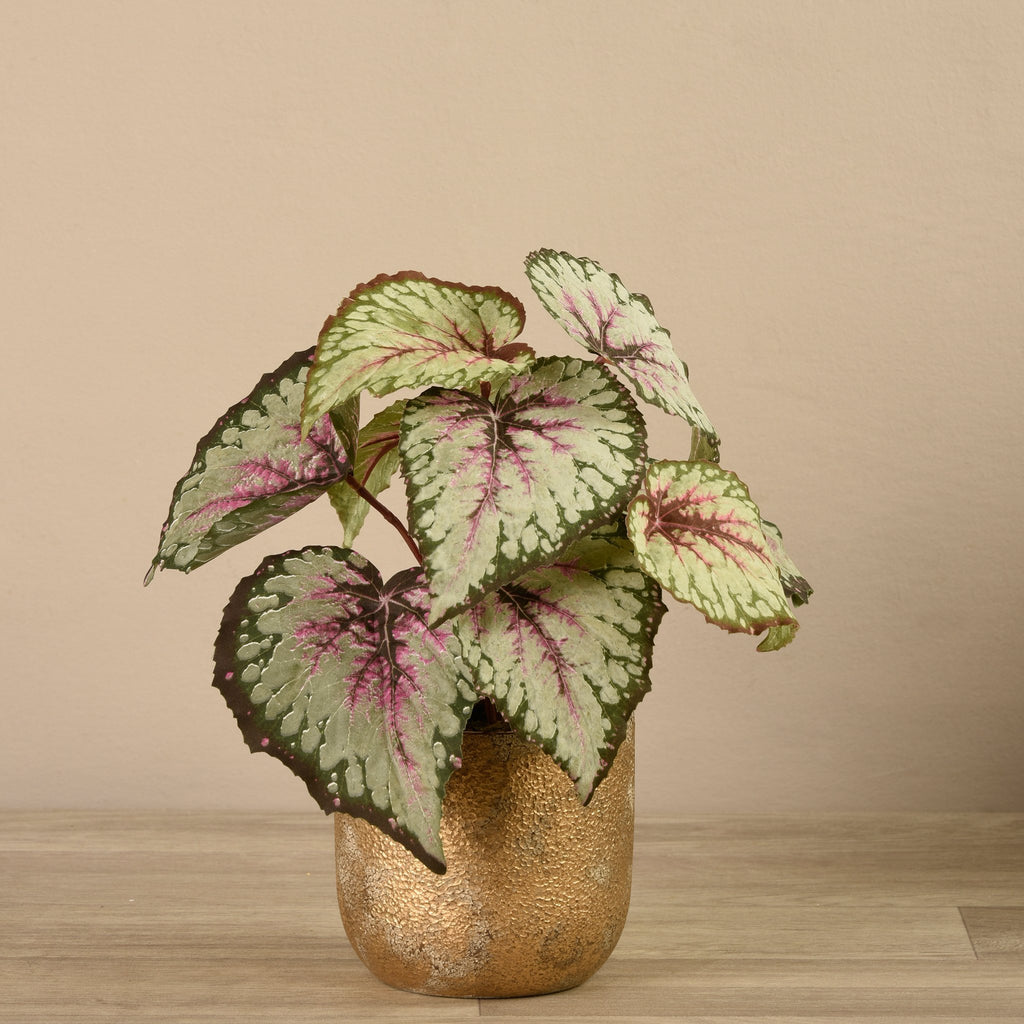 Bloomr-USA Plants Potted Begonia artificial flowers artificial trees artificial plants faux florals