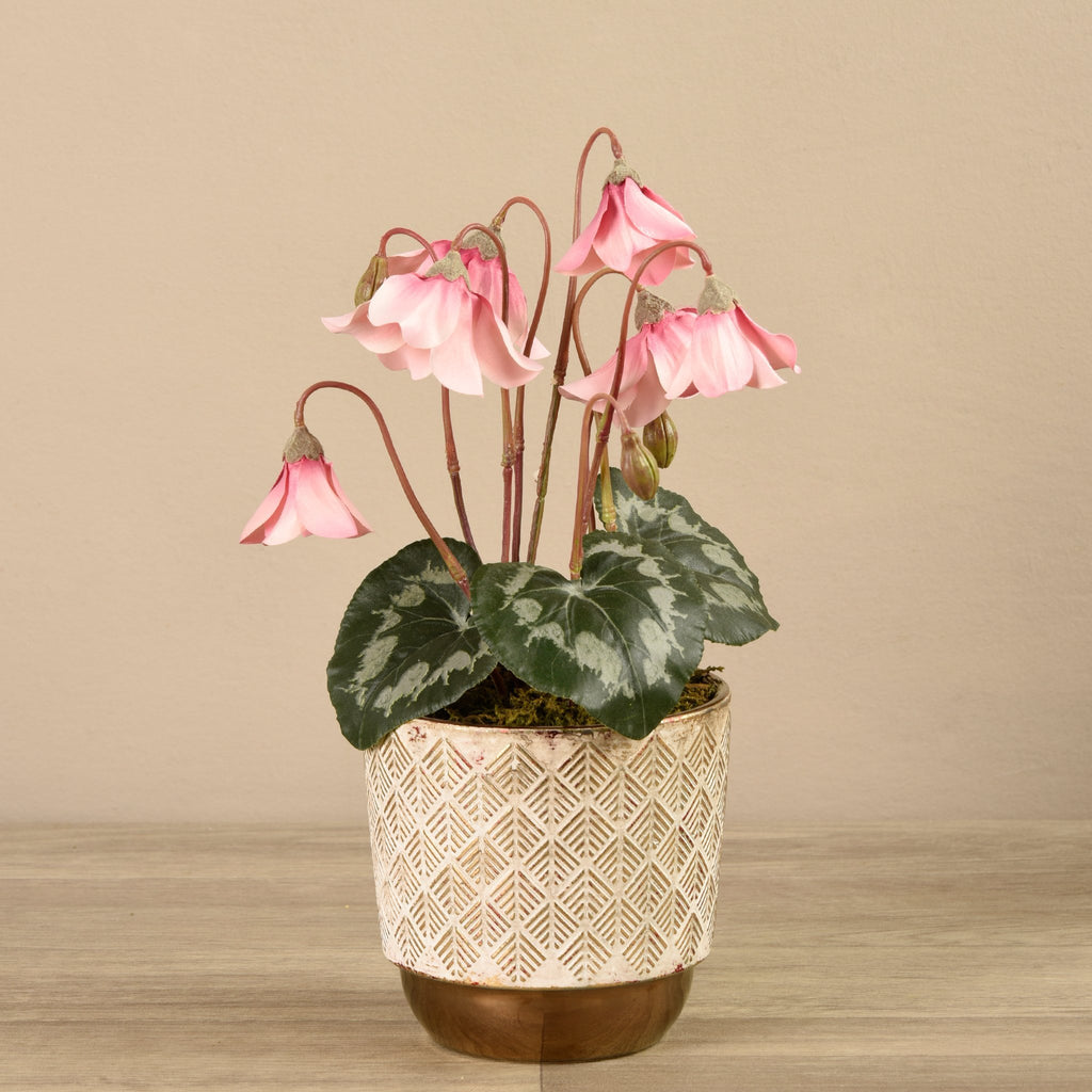 Bloomr-USA Plants Small Potted Cyclamen artificial flowers artificial trees artificial plants faux florals