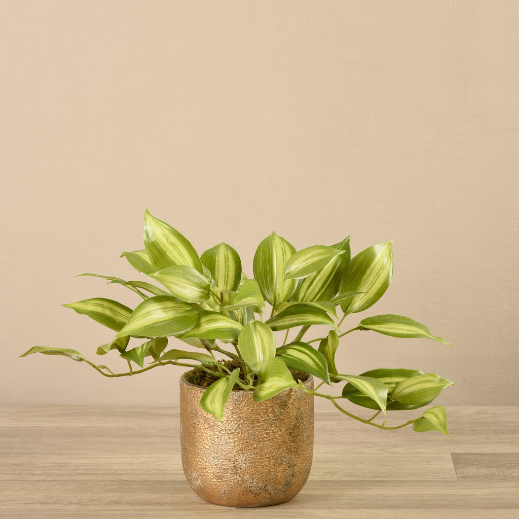 Bloomr-USA Plants Small Potted Vanilla Plant artificial flowers artificial trees artificial plants faux florals