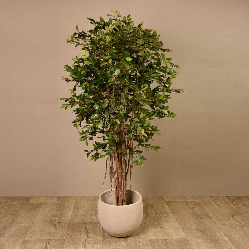 Bloomr-USA Trees Ficus Retusa Tree artificial flowers artificial trees artificial plants faux florals