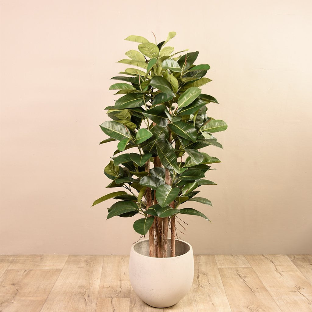 Bloomr-USA Trees Oak Ficus Tree artificial flowers artificial trees artificial plants faux florals