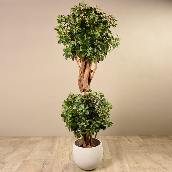 Bloomr-USA Trees Panda Ficus Double Ball artificial flowers artificial trees artificial plants faux florals