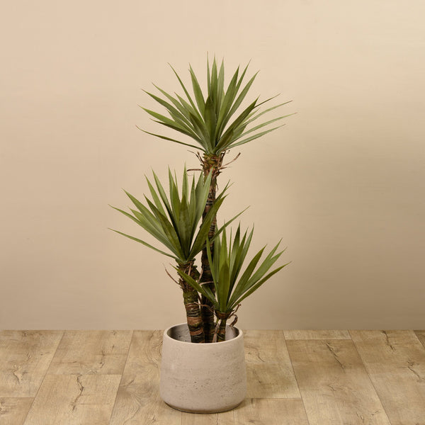 Bloomr-USA Trees Yucca Plant artificial flowers artificial trees artificial plants faux florals