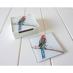Artist Lab - Rachel Hollis - Eastern Rosella - GLASS Coaster Set