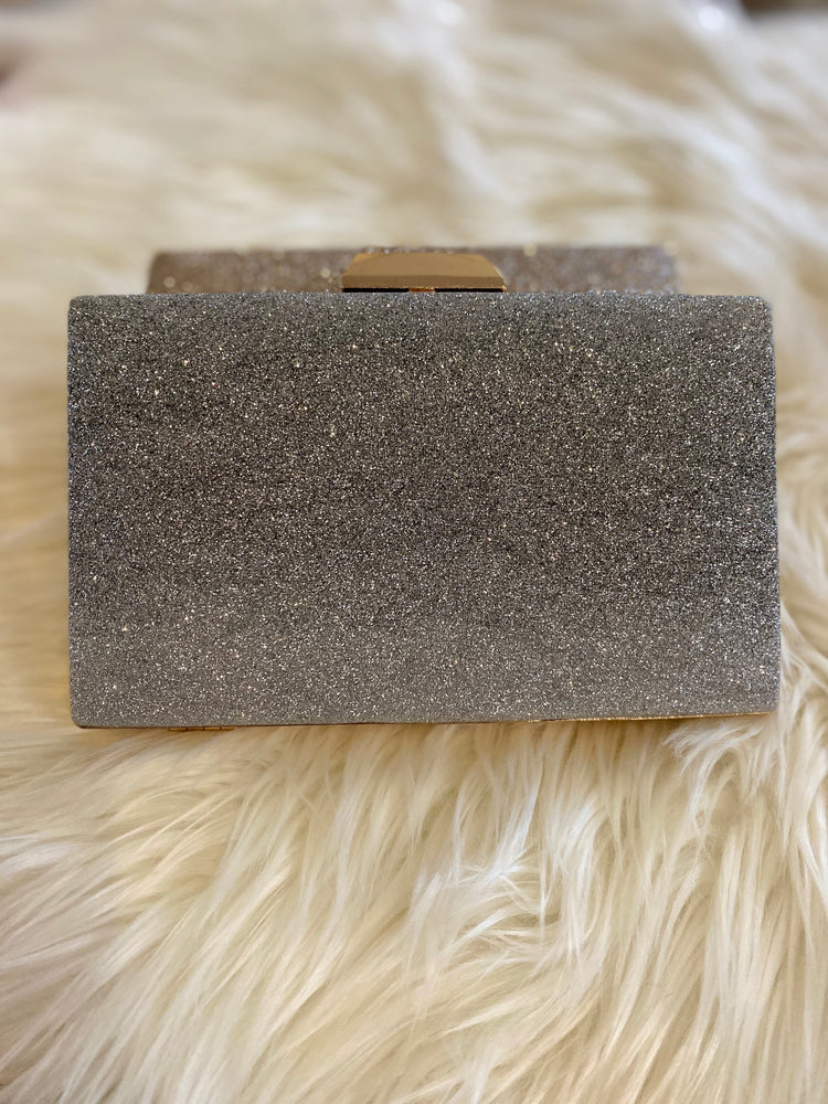 Glitter Clutch Purse Brecha