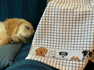 poli dri 100% Cotton Dish Towel Jacquard Prints| Color| Dogs
