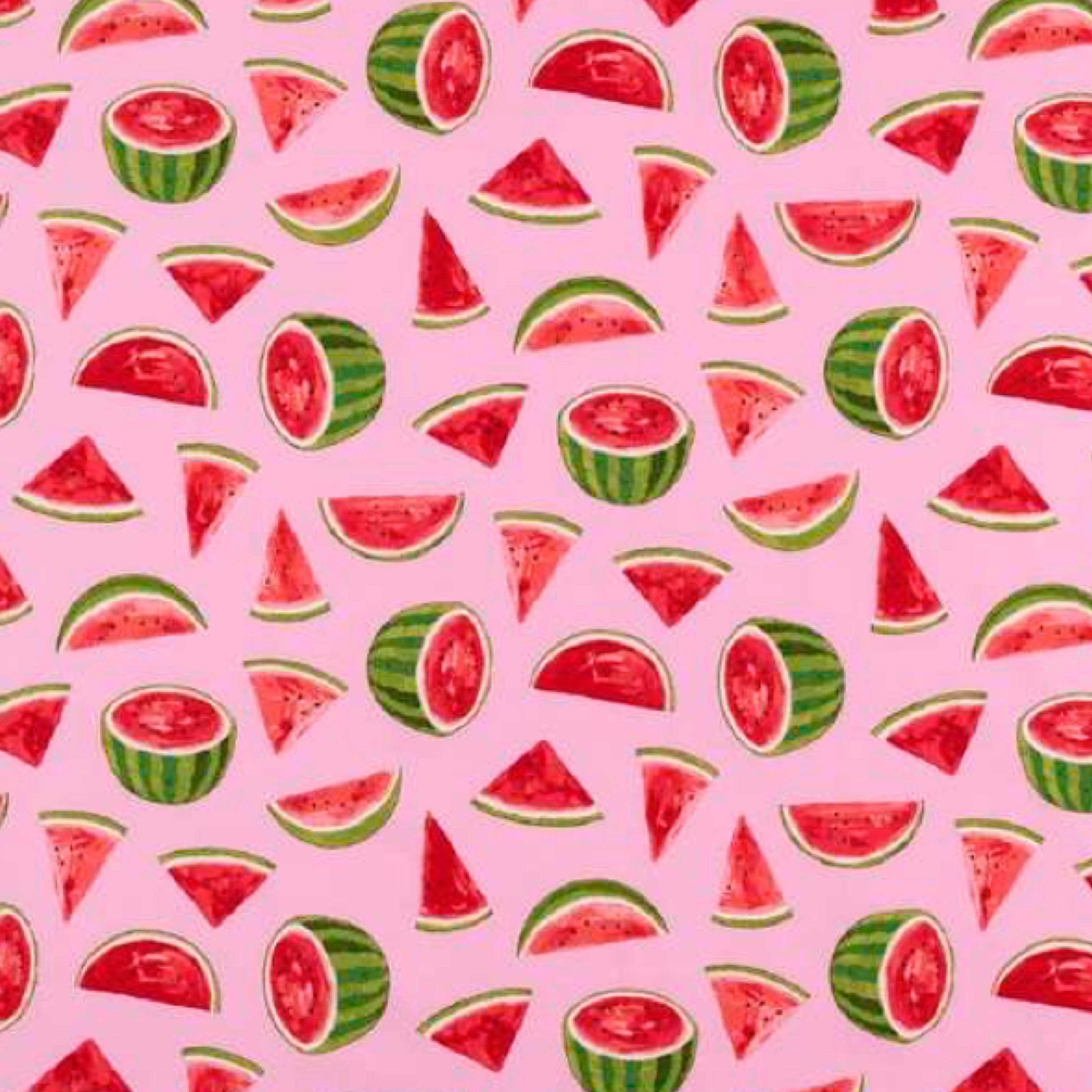 Baby Bib - Watermelon