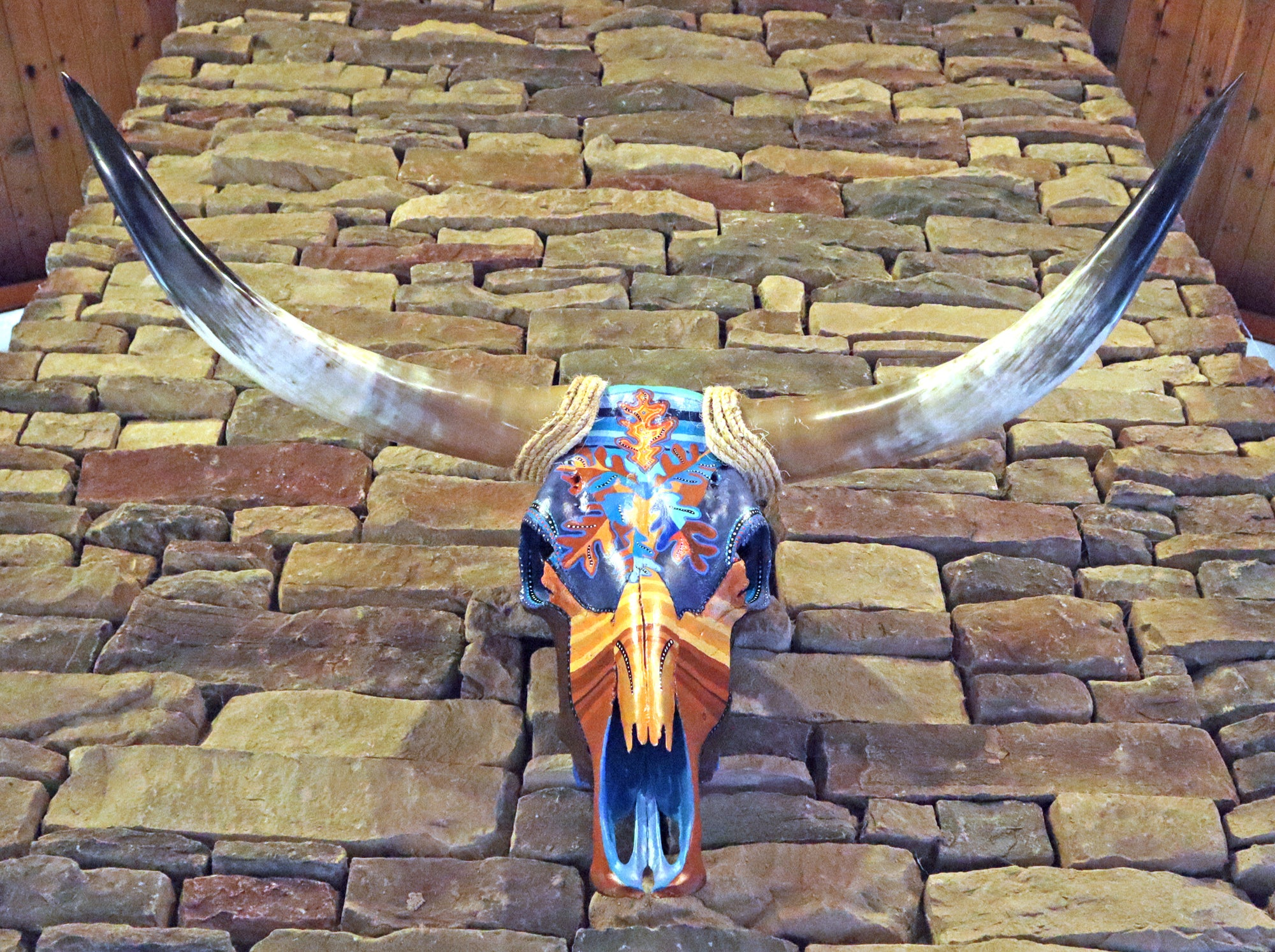 Hand Painted Steer skull. Video.