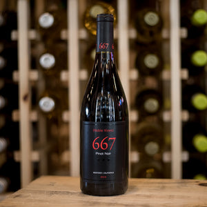 NOBLE VINES 667 PINOT NOIR 750ML