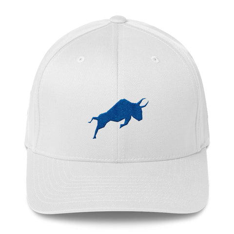 Polymath Bull Fitted Hat