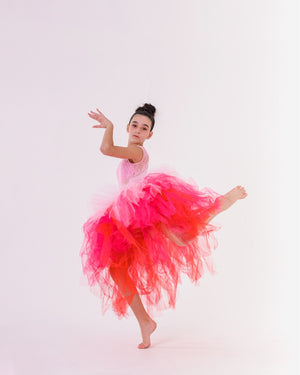 Shades of Pink Ombré Layer Style Tutu