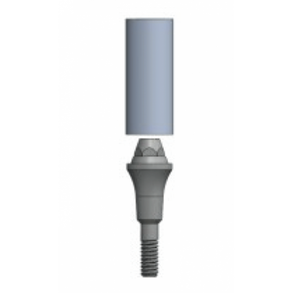 Conical (Transmucosal) Abutment Straight Emergence with burn out sleeve - Fits IT 100 series implants