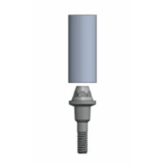 MUA (Transmucosal) Abutment Straight Emergence with burn out sleeve - Fits IT 200 series implants