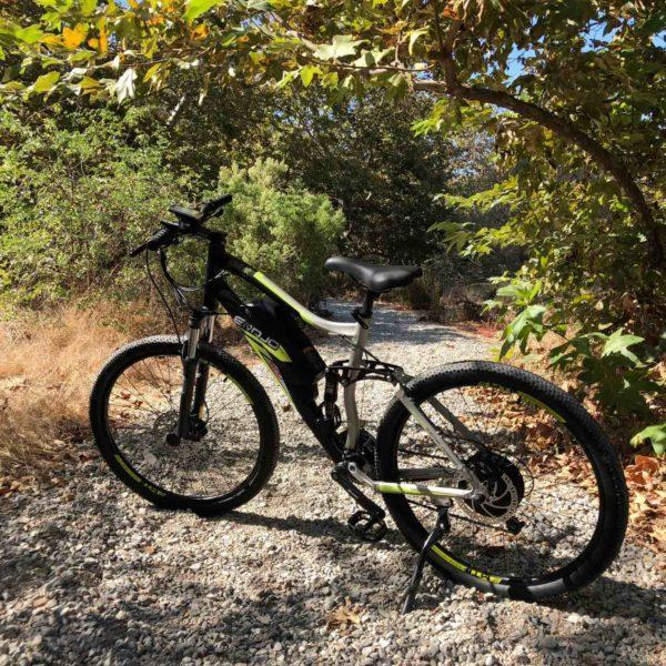 Emojo Mountain Bike Emojo Cougar Electric Mountain Bike Electric Bicycle USA