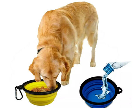 Collapsible Dog Water Bowls