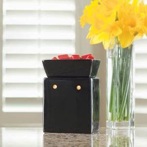 Bold and Beautiful Illumination Warmer