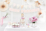 Just Married Banner - Pink