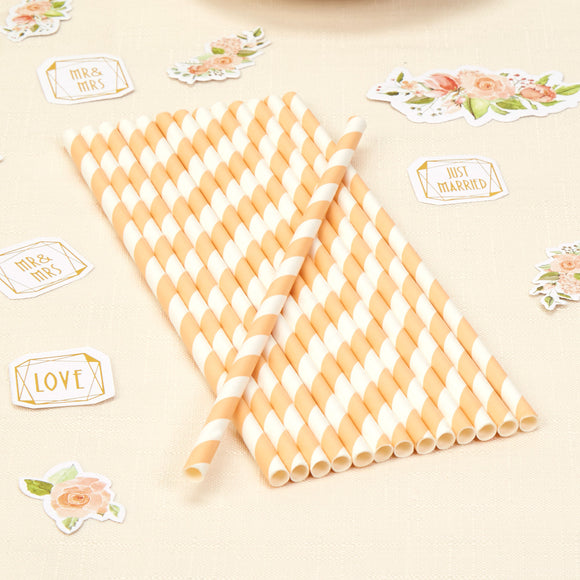 Wholesale Striped Peach Paper Straws - 25 Pack