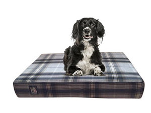 "GB Petbeds Orthopeadic 6"" Memory Foam Dog Bed - Various Designs"