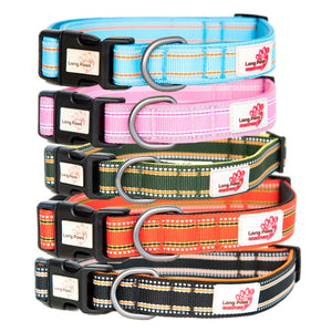 Long Paws Reflective Padded Comfort Dog Collar