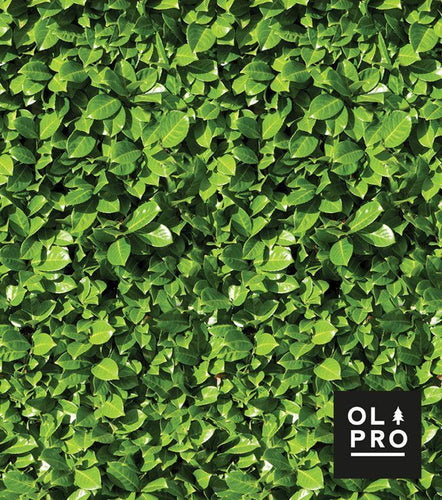 OLPRO Laurel Hedge 4 Steel Pole Windbreak