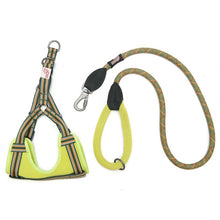 Long Paws Comfort Collection 44in Padded Rope Lead & Harness Set