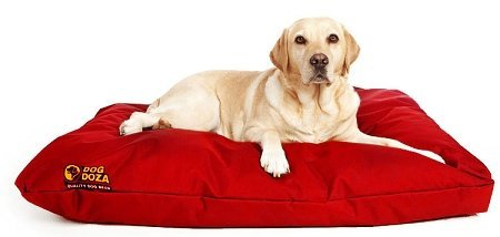 Dog Doza Waterproof Cushion Dog Bed