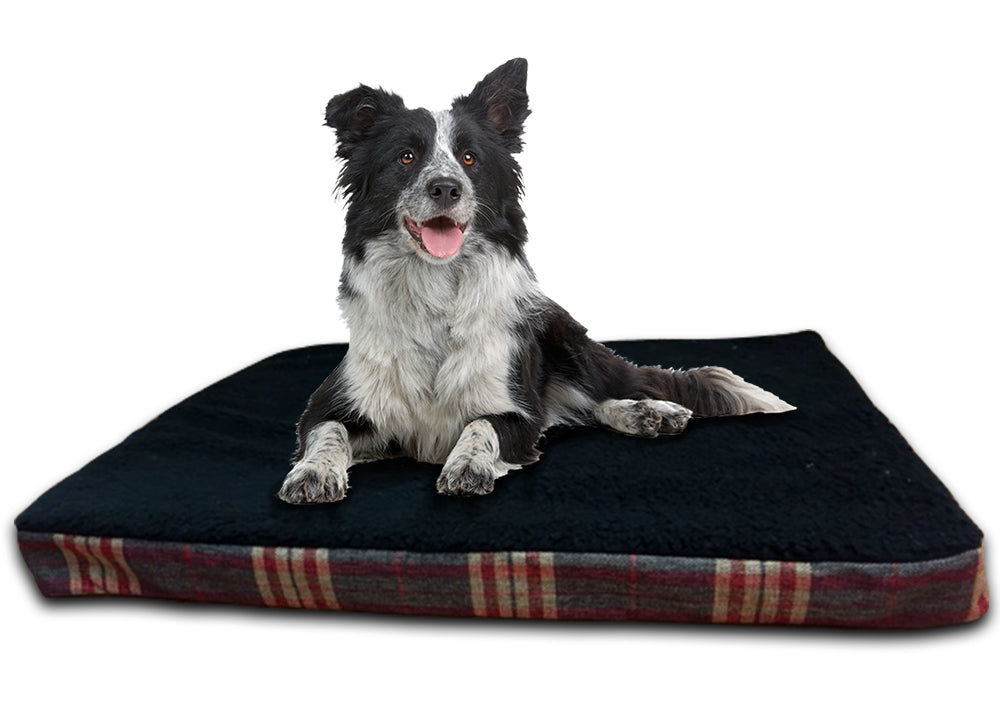 GB Pet Beds 3