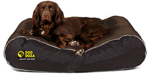 Dog Doza Active Style Waterproof Box Border Dog Bed