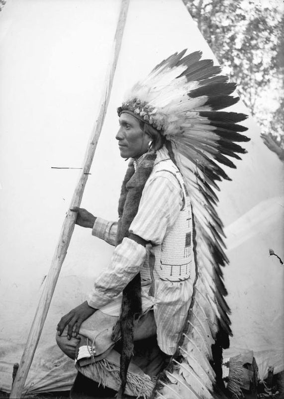 Chief Luther Standing Bear: Wherever forests have not been mowed down