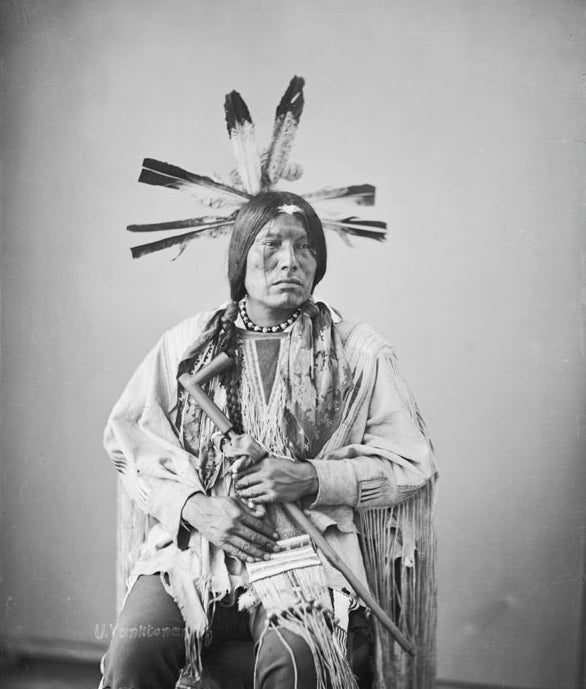 Chief Luther Standing: The character of the Indian's emotion