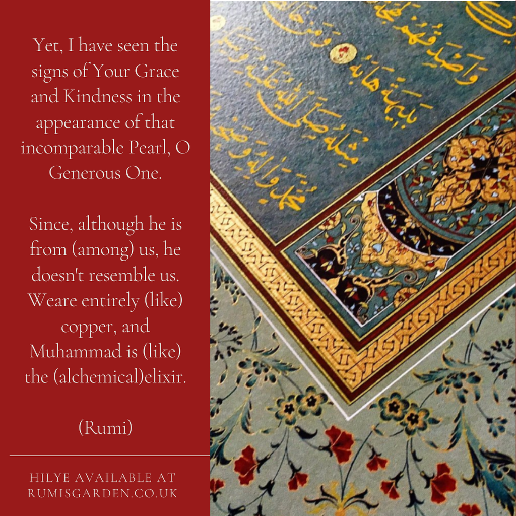 Rumi: Yet, I have seen the signs of Your Grace and Kindness