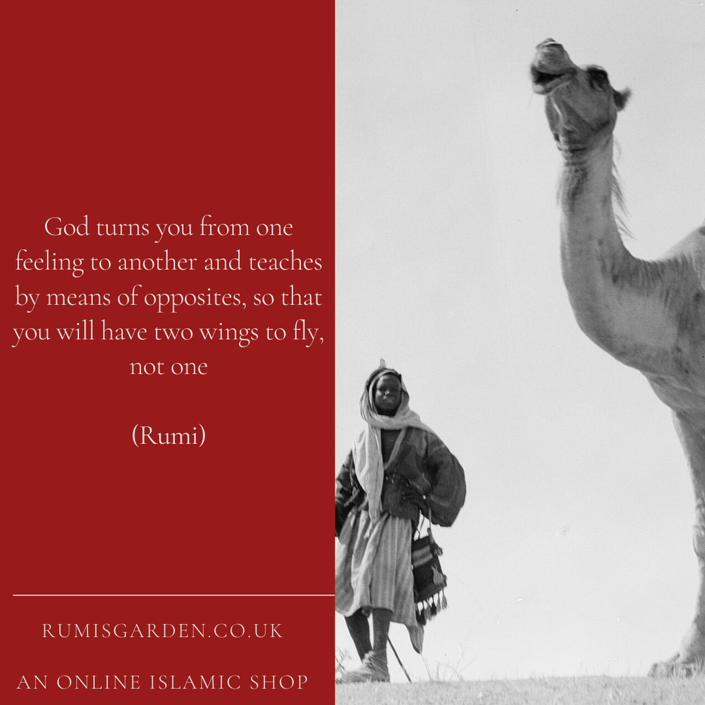 Rumi: God turns you from one