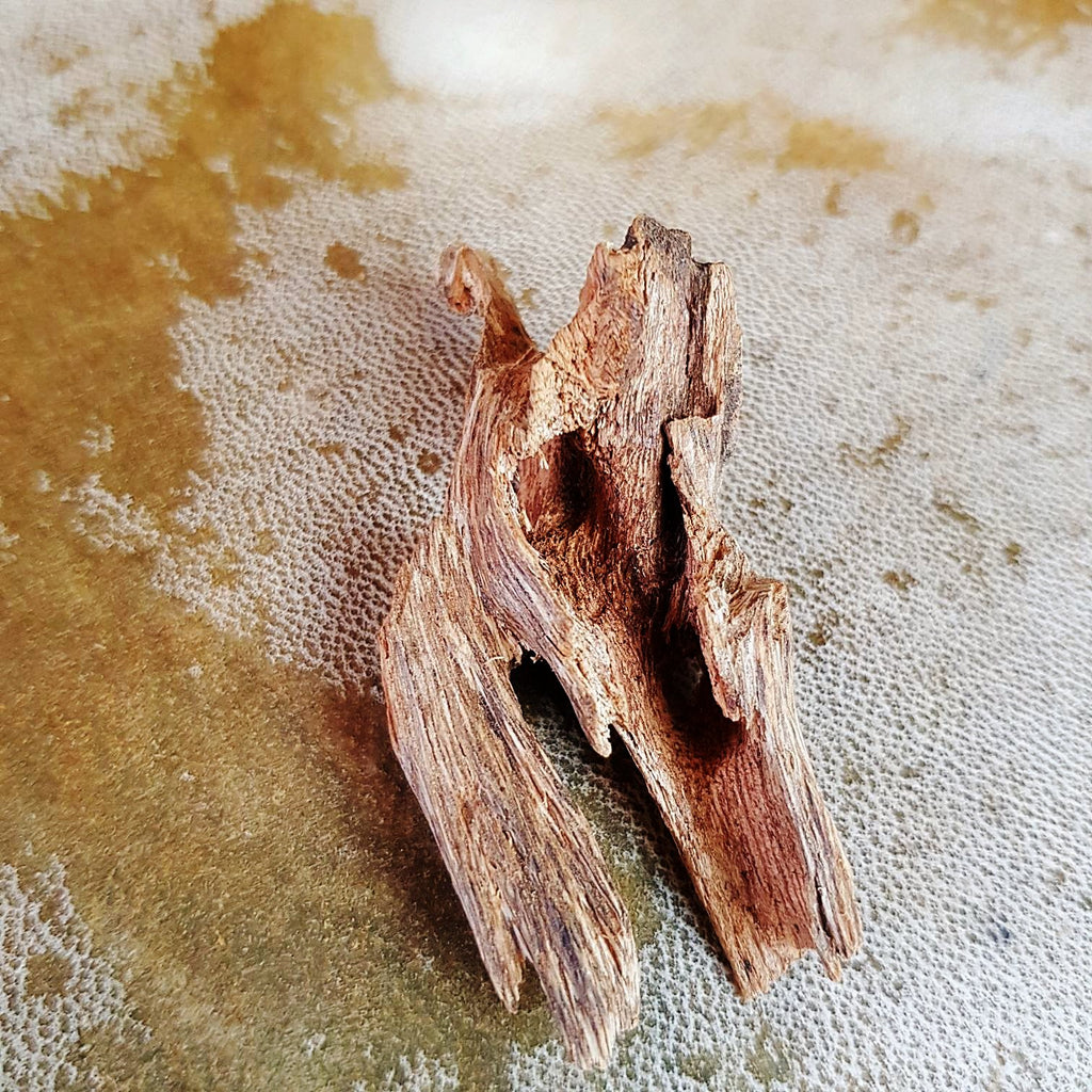 Indian Agarwood sold at www.RumisGarden.co.uk